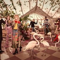 Divatkampány flamingókkal