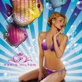 Paris Hilton új projektje