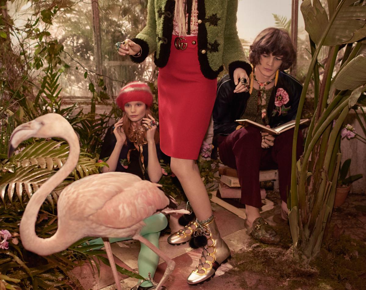 flamingo5.jpg