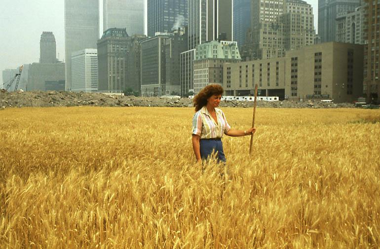 wheatfieldagnes.jpeg