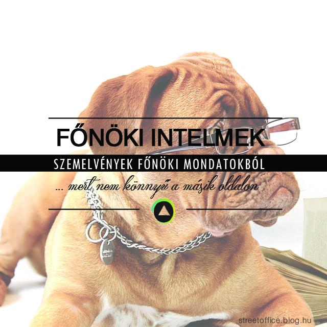 fonoki_intelmek.jpg