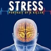 Hetvennyolcadik bejegyzés - A Stressz - Egy gyilkos portréja (dokumentumfilm)