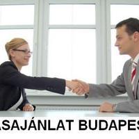 Száztizenhetedik bejegyzés - Állásajánlat - Megváltozott munkaképességű kolléga kerestetik Budapesten!