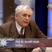 Száznegyvenkettedik bejegyzés - Eseménybeszámoló Horváth professzor előadásáról - az érelmeszesedés elleni vakcinájáról, stroke-os szemszögből