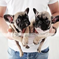 Kicsikék  #kedvencfotózás