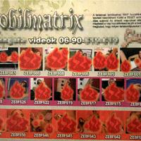 A Zsaru magazin megmutatja nekünk a pornó poklát