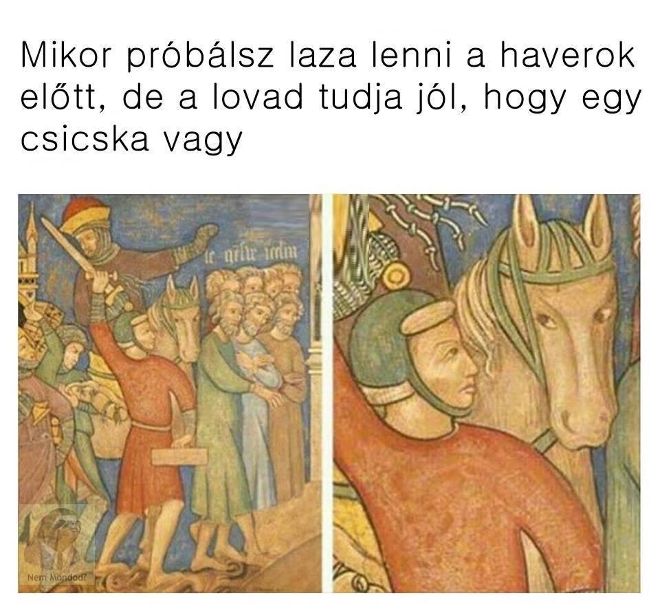 csicska.jpg