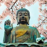 A buddhizmus, mint lázadás