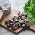 Bébi vad laskagomba házi sertés rillettel, salátával balzsamecetes dresszinggel, friss ropogós kenyérrel
