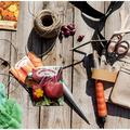 KonyhaKert - Vetésterv részletesen, növénytársításokkal