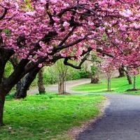Filmek minden évszakra: Tavasz