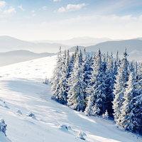 Filmek minden évszakra: Tél