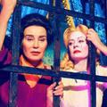 A viszály Hollywood-i istennői: Feud I. évad