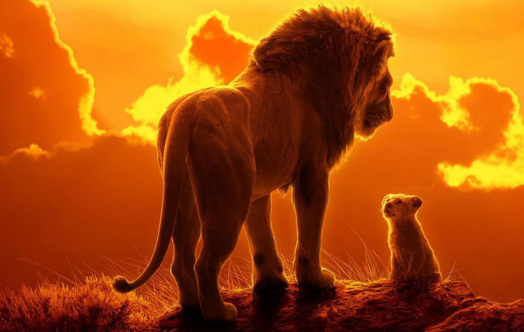 3558887-lionking.jpg