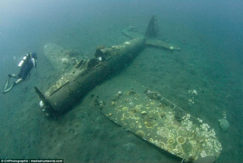 ...és kevésbé természetes környezetében. Az óceán rengeteg Zero-t nyelt el a második világháború alatt.