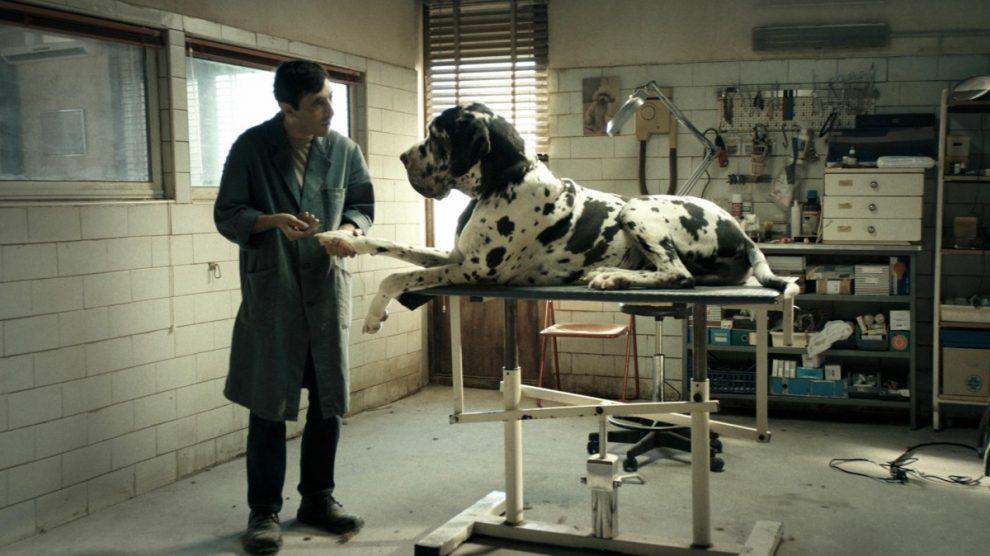 dogman1.jpg