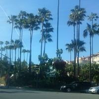 Beverly Hills, Hair, Sunset boulvard - mi kell még?