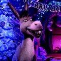 tv2, Shrek, karácsony...