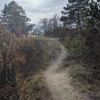 WadkanZ Trail Törökbálint M
