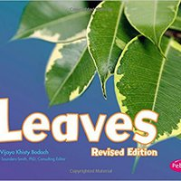 'IBOOK' Leaves (Plant Parts). every James Jewel should offer