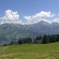 21st August – Golden Pass, Alp, Montreux, Brig