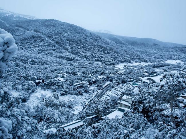 havazas1.jpg