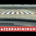 3D-zebrák lephetik el az országot #zebraminimum
