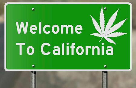 kep-4-california-pintz.jpg