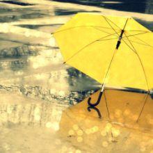 umbrella220.jpg