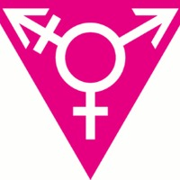 A transzfeminizmus talányának megfejtése