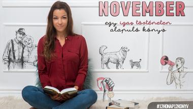 NOVEMBER: egy igaz történeten alapuló könyv