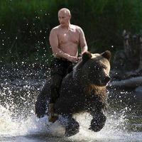 Ne nézz hátra, jön a medve!