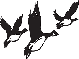 geese.png