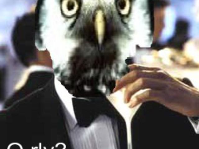 A madár, aminek eszköztárát még James Bond is megirigyelné
