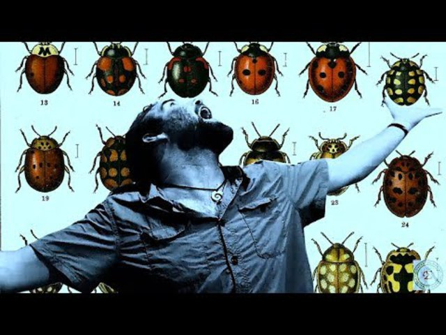 VIDEÓNAPLÓ a biodiverzitás napokról