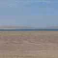 Pisco és a Paracas-félsziget