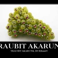 Traubi