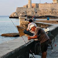 Kockában áll a tengeri durbincs a Havannai öbölben