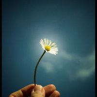 Sákjamuni virágot mutat fel