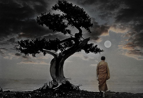 bonsai_buddha.jpg