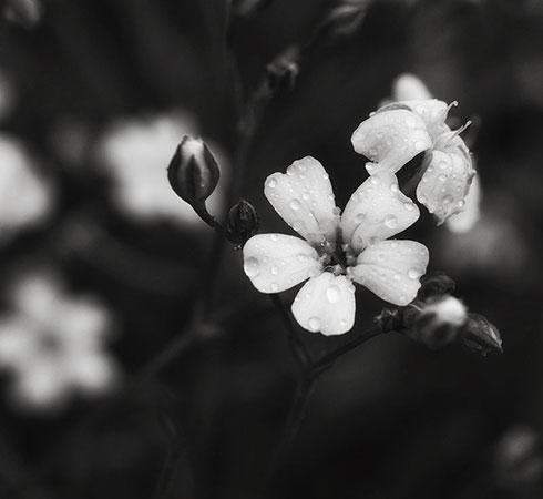 by_ZanaSoul.jpg
