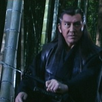 New Shadow Warriors 2 (2003)