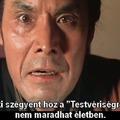 Zatoichi 19 - Samaritan Zatoichi (1968)