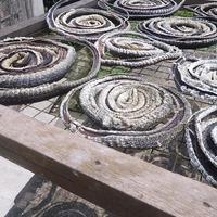 Rémálom: kígyótenyésztésből él a falu
