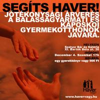 Segíts Haver - Jótékonyági árverés a Szatyor Bár és Galériában