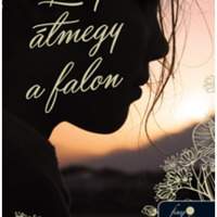 Anne C. Voorhoeve: Lilly átmegy a falon #kritika#