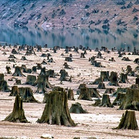 Kérdések a klímaváltozásról