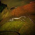 A fehér ló