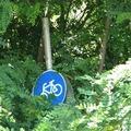 Makó, és a kerékpárosbarát lózung, avagy hogyan lehet százmilliókból kitolni egy várossal