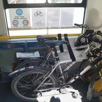 Ingyenesen szállítható kerékpár a szegedi villamosokon